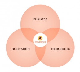 INTERSECTION OF BUSINESS, TECHNOLOGY AND INNOVATION