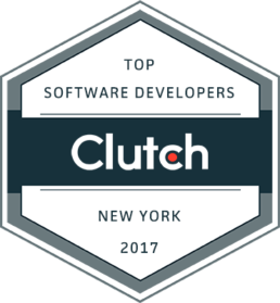 Top New York Software Developer