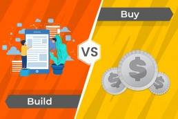 Build or buy custom software